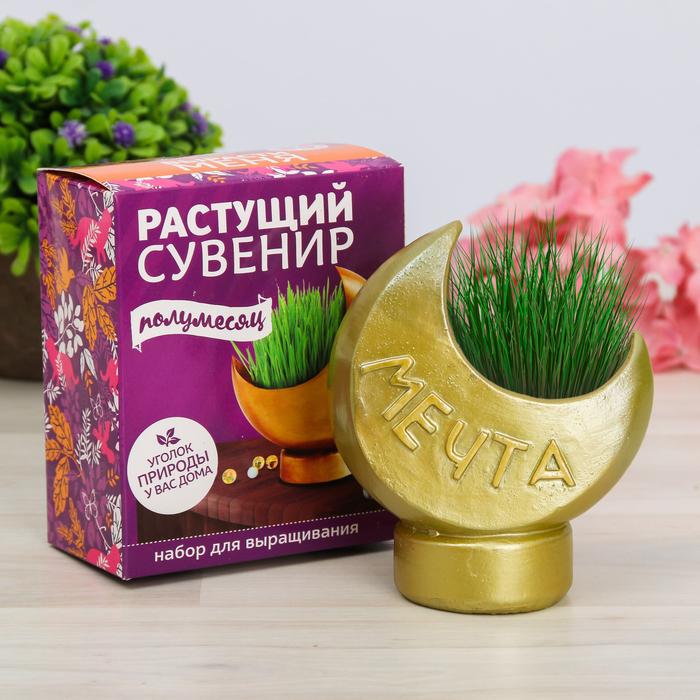 """Растущая трава в горшочке """"Полумесяц"""""""