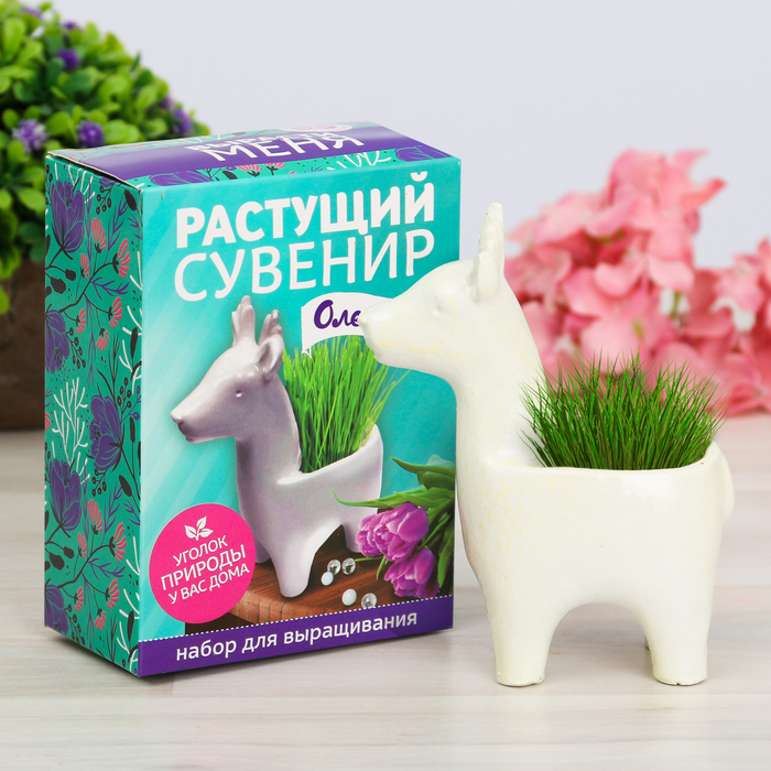 """Растущая трава в горшочке """"Олененок"""""""
