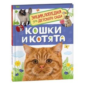 Энциклопедия для детского сада «Кошки и котята»