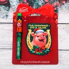 """Набор """"Год свинячий - это к удаче!"""", ручка + магнит"""
