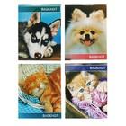 "Notepad A7 40 sheets clip Calligrata ""Cute animals"", a cover of cardboard chrome-ersatz"