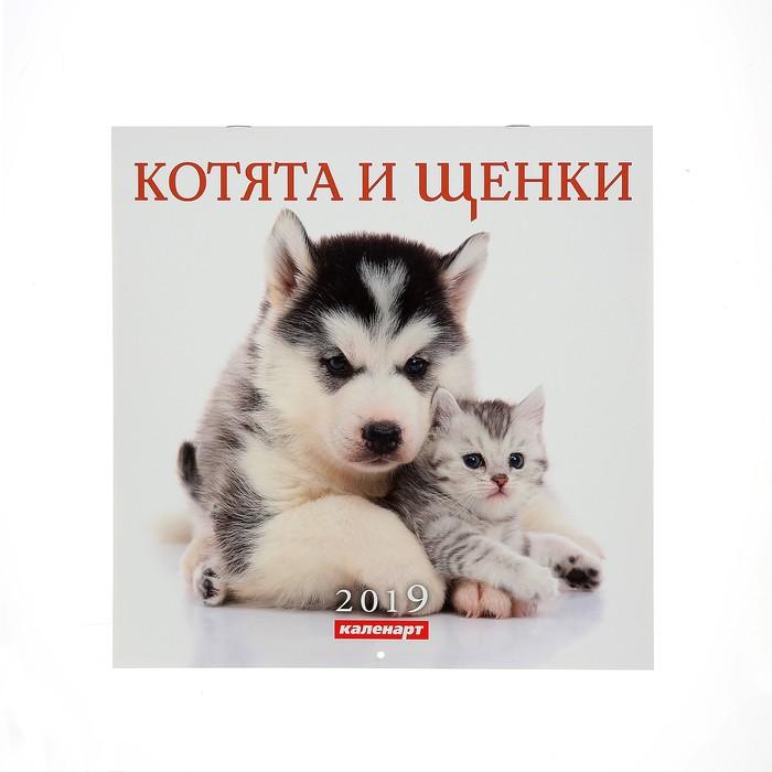 """Календарь на скрепке """"Котята и щенки"""" 2019 год, 28,5х28,5см"""