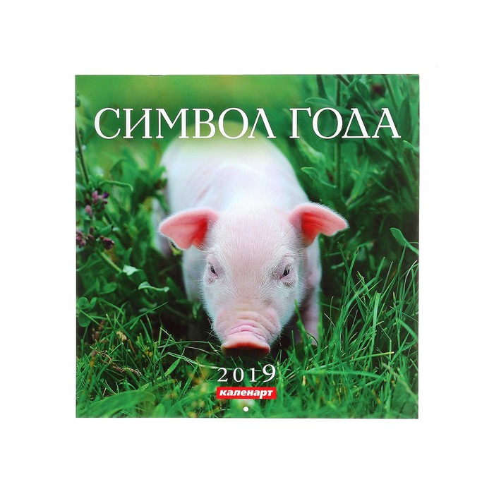 "Календарь на скрепке ""Символ года - 3"" 2019 год, 28,5х28,5см"