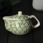 "The tea pot 200 ml ""Spring bloom"", with metal sieve, green"