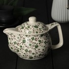 "The tea pot 350 ml of ""Vignettes"", with metal sieve, green"