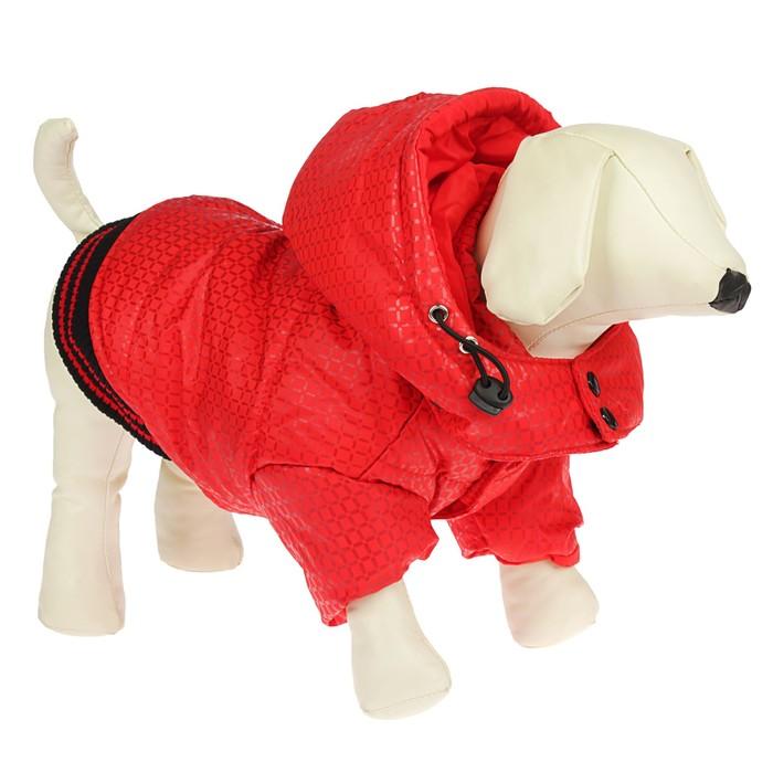 Куртка супертеплая на синтепоне, размер L (ДС 39 см, ОГ 50 см), красная