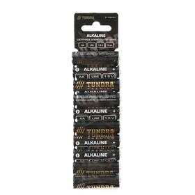 Батарейка алкалиновая TUNDRA, AA, LR6, блистер, 10 шт