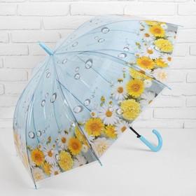 Зонт - трость полуавтоматический «Ромашки», 8 спиц, R = 48 см, цвет голубой
