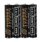 The TUNDRA alkaline battery, AAA, LR03, spike, 4 PCs