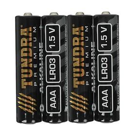 Батарейка алкалиновая TUNDRA, ААА, LR03, спайка, 4 шт