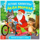 Сказка в стихах «Летние каникулы Деда Мороза», 12 стр.
