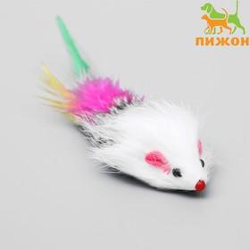 Мышь из натурального меха с хвостом из перьев, 6,5 см