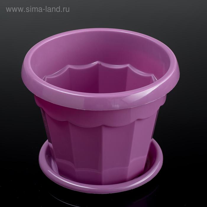 Flower pot is 0.7 l, color purple