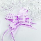 Bow - tie N1, 2, simple with two stripes, light purple