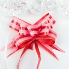 Bow - tie N1, 2, simple with two stripes, red