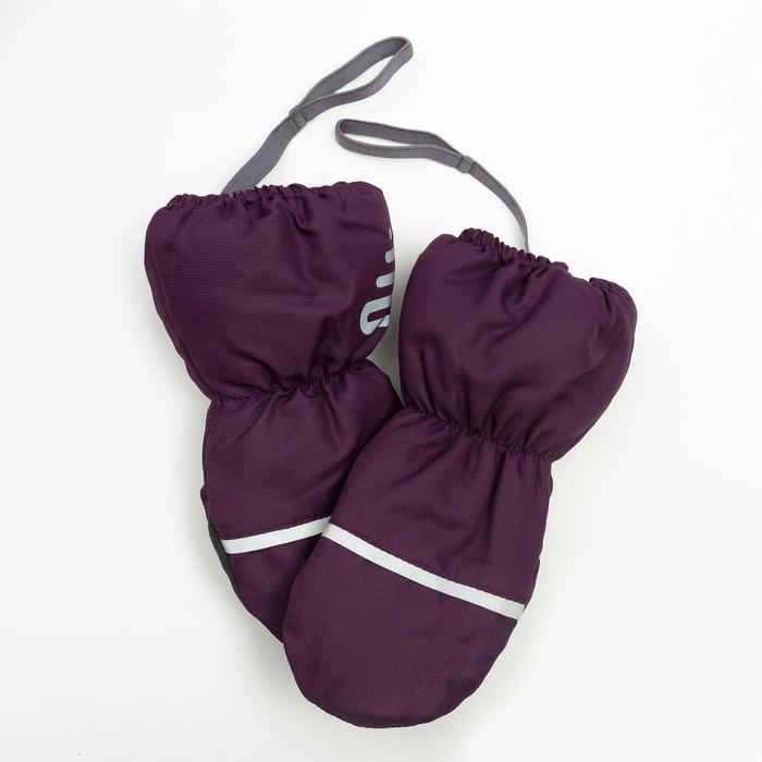 Рукавицы Эмбер,  2 года, цвет серо-фиолетовый, 90814-81