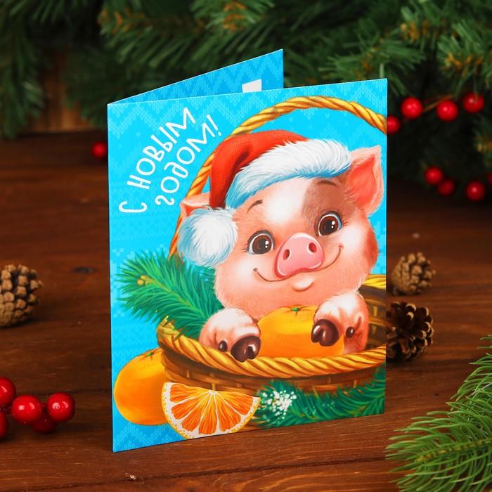 Компании днем, новогодние открытки свинок