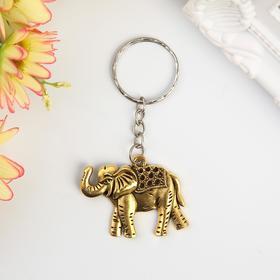"Metal keychain ""African elephant"" MIX of 3,5x3,5 cm"