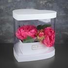 Коробка подарочная 26 х 27 х 25 см - фото 8877856