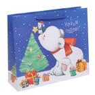 Пакет ламинированный горизонтальный «Приятных сюрпризов в Новом Году!», 23 × 27 × 8 см