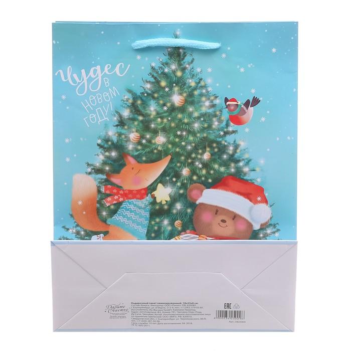 Пакет ламинированный вертикальный «Чудес в Новом Году», 23 × 27 × 8 см