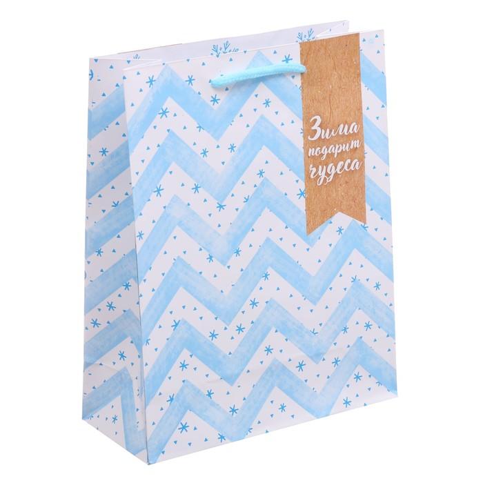 Пакет ламинированный вертикальный «Зима подарит чудеса», 23 × 27 × 8 см