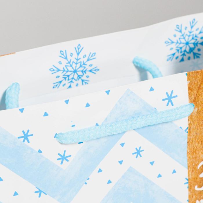 Пакет ламинированный вертикальный «Зима подарит чудеса», 18 × 23 × 8 см