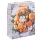 Пакет ламинированный вертикальный «Теплые мгновения», 23 × 27 × 8 см