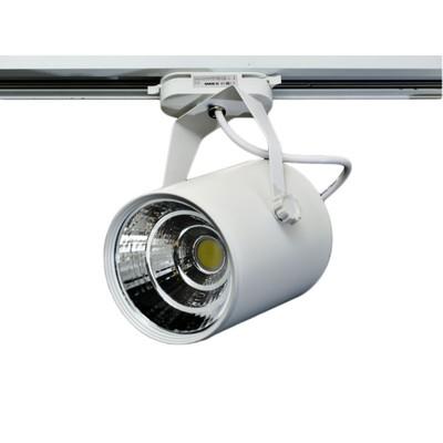 Светильник светодиодный на однофазный трек IL.0010.0060, LED 4000-4500К, 30 Вт, цвет белый