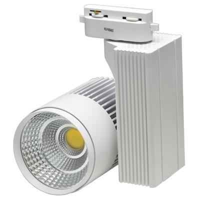 Светильник светодиодный на однофазный трек IL.0010.0061, LED 4000-4500К, 30 Вт, цвет белый