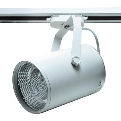 Светильник светодиодный на однофазный трек IL.0010.0063, LED 4000-4500К, 40 Вт, цвет белый