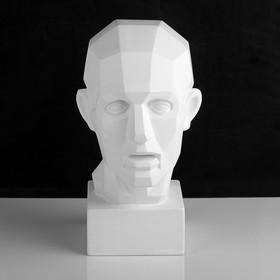 Гипсовая фигура. Обрубовка головы по Гудону, 35,5 х 20,5 х 24 см