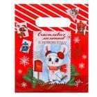 Пакет подарочный полиэтиленовый «Новогодняя почта», 17 × 20 см