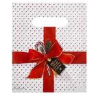 Пакет подарочный полиэтиленовый «Пусть зима принесет счастье», 17 × 20 см