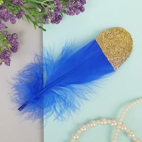Набор перьев для декора 5 шт, размер 1 шт: 13,5 × 2 см, цвет синий