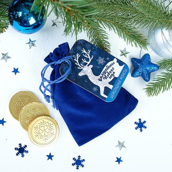 """Шоколадные монеты в мешочке, 10 шт. """"Волшебного нового года"""""""