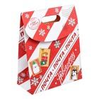 Пакет подарочный «Почта Новогодняя», 26 × 32 × 12 см