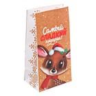 Пакет подарочный без ручек «Самый сладкий подарок», 10 × 19,5 × 7 см
