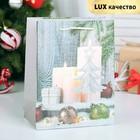 """Пакет ламинированный """"Новогодняя композиция"""", люкс, 18 х 10 х 23 см"""