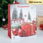 """Пакет ламинированный """"Новогодние подарки"""", люкс, 26 х 12 х 32 см"""
