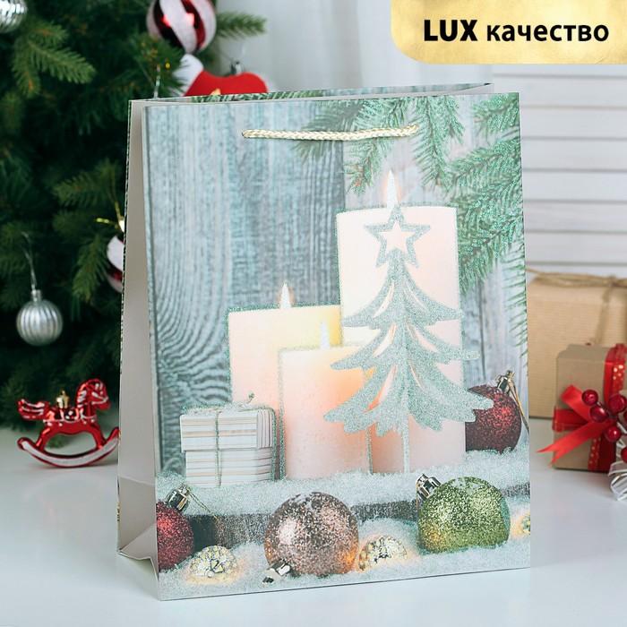 """Пакет ламинированный """"Новогодняя композиция"""", люкс, 31 х 12 х 44 см"""