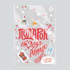 Пакет пластиковый «Подарок от Деда Мороза», 20 × 30 см