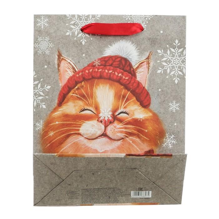 Пакет крафтовый вертикальный «Снежный кот», ML 23 × 27 × 8 см