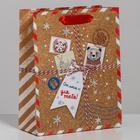 Пакет крафтовый вертикальный «Новогодняя посылка», 18 × 23 × 8 см