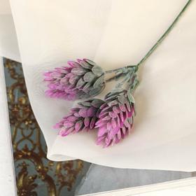 Bouquet of Lavender-15 cm (price for piece)