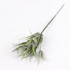"Букет ""Травянка"" 15 см  (цена за шт)"