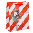Пакет ламинированный вертикальный «Поздравляю!», 12 × 15 × 5,5 см