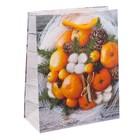 Пакет ламинированный вертикальный «Теплые мгновения», 12 × 15 × 5,5 см