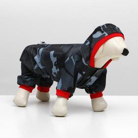 "Jumpsuit ""Military"" for a pug, size S (22-24 cm, DS, OG 38-40 cm)"