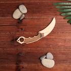 """Сувенирное оружие """"Нож-клык"""", 22 см"""